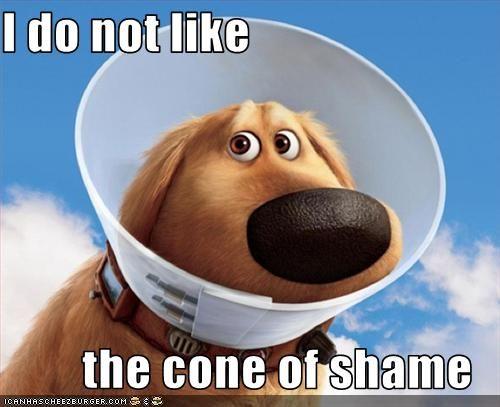 cone_of_shame.jpg